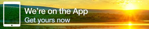 Get McKinsey's Insights App